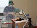 Veterinarijos gydytojas atlieka siųstuvo implantaciją