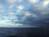 Jūroje