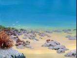 Povandeninis rifų kraštovaizdis